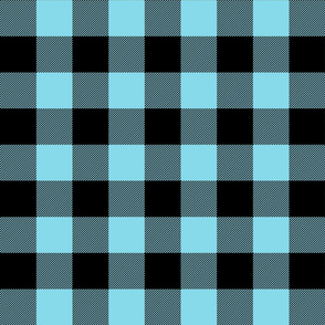 buffalo plaid 2in sky blue