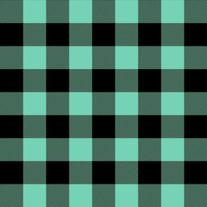 buffalo plaid 2in sea foam green