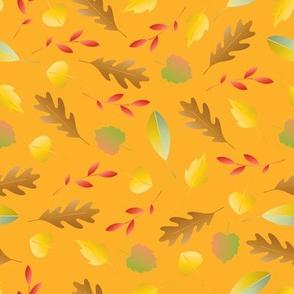 colorful autumn leaves light