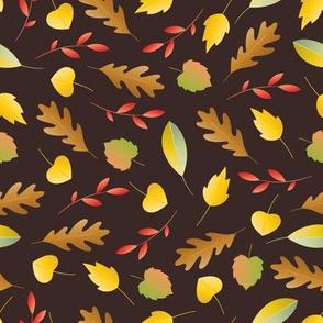 colorful leaves dark