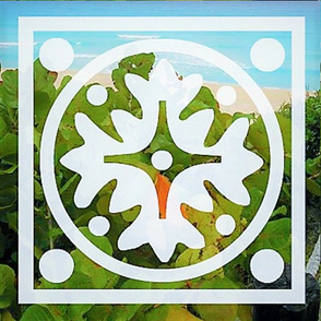 tropics in a square design