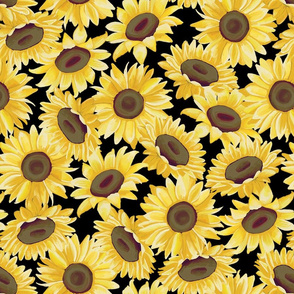Sunflower Field - Black