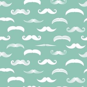 mustaches on aqua stone