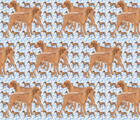 Rridgeback_blue_pattern_shop_preview