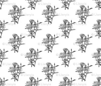 Pointillism_Rose_pattern_v2-3v4