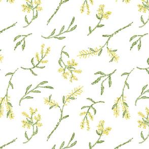 Pointillism Wattle
