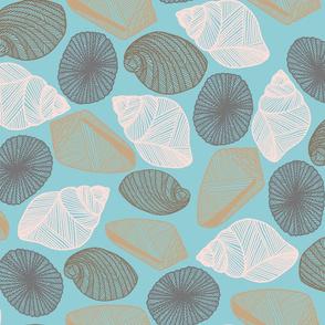 Hawaiian Tidal Pool-Sea Shells Sea Green