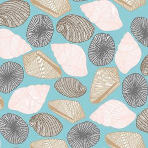 Hawaiian Tide Pool-Sea Shells Sea Green/White