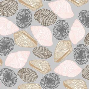 Hawaiian Tide Pool-Sea Shells Gray/White