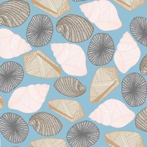 Hawaiian Tide Pool-Sea Shells Blue/White