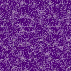 Spider Webs in Purple