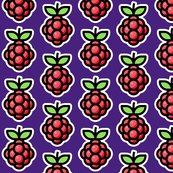 Rraspberry-pi-large-background_shop_thumb