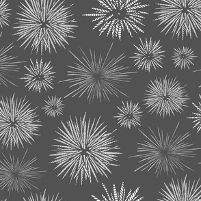 Hawaiian Tide Pool-Urchins Dark Gray/White