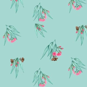 Gumnuts Bright Pink Blossoms Scattered Eucalyptus Blue Green
