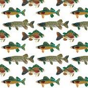 Rrbigfish_sf_shop_thumb