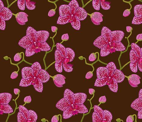 orchid flowers fabric by effi_keijsper on Spoonflower - custom fabric