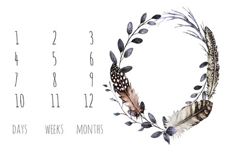 Rblank_bohemian_feathers_baby_milestone_shop_preview