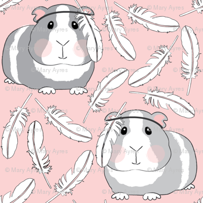 guinea-pigs-with-feathers on pink