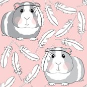 Rguinea-pigs-with-feathers_shop_thumb