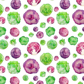lettuce and cabbage pattern on white