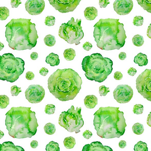 lettuce pattern on white