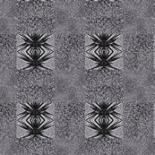 Anansi in Grey