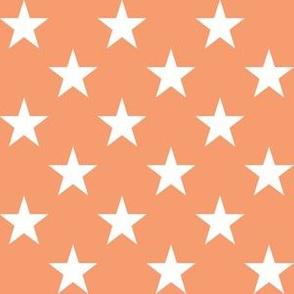 One Inch White Stars on Peach