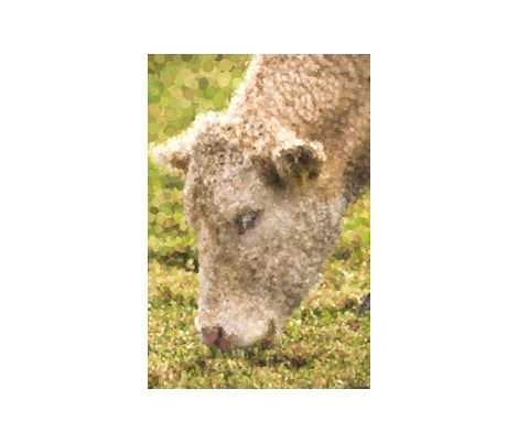 Rrrrrcow_pointilism_contest154744preview