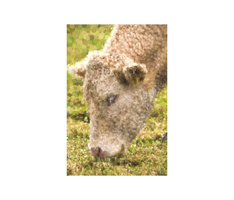 cow_pointilism fabric by iwanderandponder on Spoonflower - custom fabric