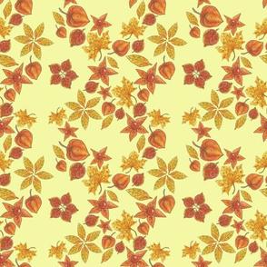 Physalis on light yellow background