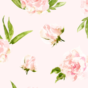 Patterns of peach roses