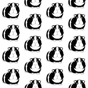 black guinea pigs repeating pattern