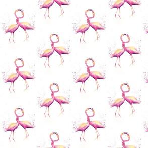 Twisted_Flamingos
