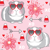 valentine guinea-pigs on-pink