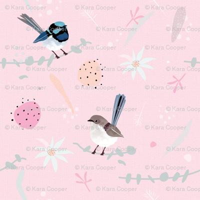 Fairy Wrens / Australian birds flannel flowers eucalyptus billy button