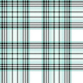 mod baby tartan mint on white