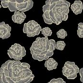 boho lounge rose - grey black rose