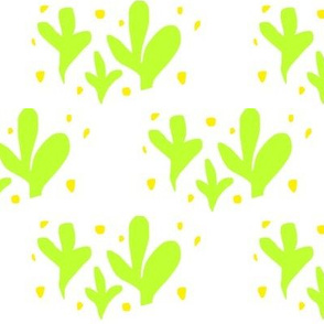 Bright Cactus