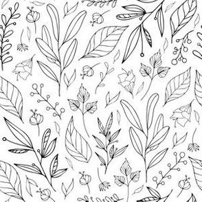 Plants & Botanicals