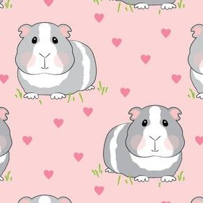 guinea-pigs-with-pink hearts