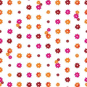 Pretty_flowers_all_in_a_row