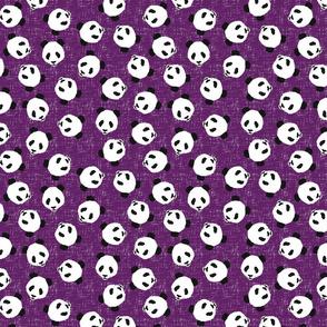 PandaScatterPlum