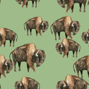 Buffalo Herd on Green - Smaller Scale