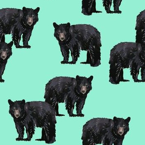 Bears Bears Bears on Mint - Smaller Scale