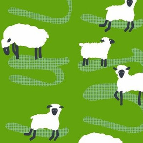 farm sheep_greener pastures