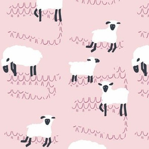 farm sheep_in the pink
