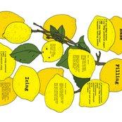 Rchocolate_lemon_slice_final_-_rotated_shop_thumb