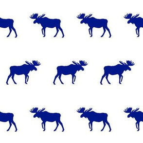 moose - royal blue