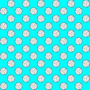 Half Inch Black and White Volleyball Balls on Aqua Blue