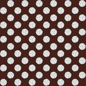 Half Inch Black and White Volleyballs on Brown